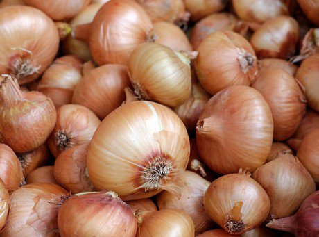 Onion mixed signals dating