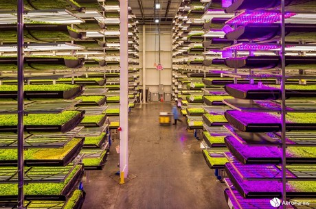 Agtech solutions allow farming to move indoors